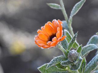 Meteo, freddo in arrivo: aria d'inverno per l'equinozio