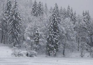 Meteo: gelo imminente, anche neve al centrosud