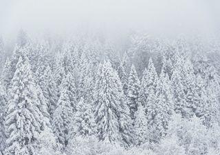 Meteo: grandi nevicate e piogge intense, gli ultimi aggiornamenti