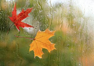 Meteo, l'autunno fa sul serio: in settimana piogge, freddo e nevicate
