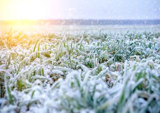 Meteo: le previsioni della settimana, quanto durerà il bel tempo?