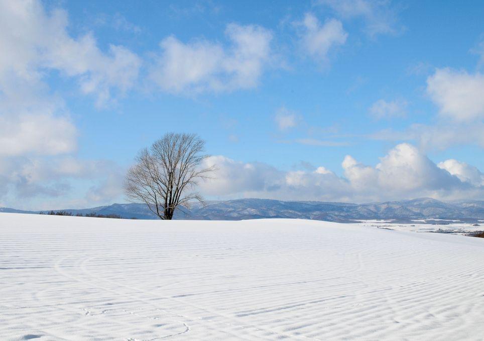 Meteo: torna il freddo con piogge, temporali e neve a quote collinari