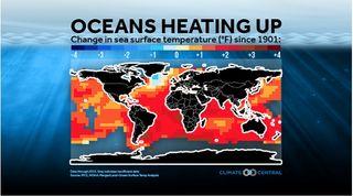 Mientras el CO2 sube, la salud del océano baja