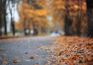 UK weather forecast: Cold front and rain before calmer weather
