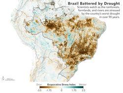 Brasil afectada por la sequía: la peor en un siglo