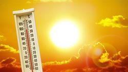 Calentamiento global: responsable de 1 de cada 3 muertes por calor