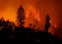California: el incendio más destructivo de toda su historia