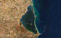 Causantes principales de la masiva mortalidad en el Mar Menor