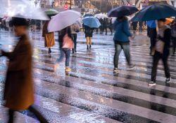 Chuvas diminuem no leste do NE e volta a chover no PR e em SC