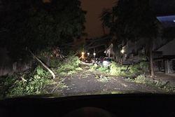 Ciclón Leslie: racha máxima de 176km/h y miles de casas sin luz