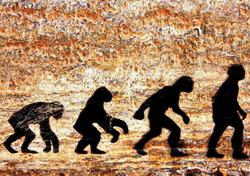 Clima subártico para o primeiro Homo sapiens na Europa