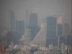¿Cómo cuidar mi salud durante los altos índices de contaminación?