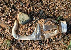 Conseguiremos viver sem o plástico?
