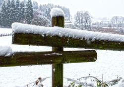 Das Wochenende wird kalt mit Schneefall und Eisregen!
