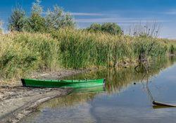 Deutschland steht vor der Dürre-Katastrophe: Trocknet der Rhein aus?