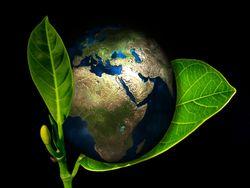 A importância do Dia Mundial da Terra