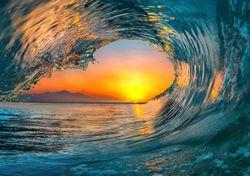 Journée mondiale des océans : des chiffres alarmants !