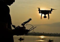 ¡Drones al rescate! La esperanza para los perros atrapados en La Palma