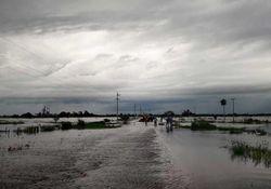 Emergencia hídrica y pérdidas millonarias