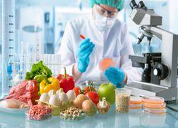En quoi ce que nous mangeons contribue au changement climatique ?