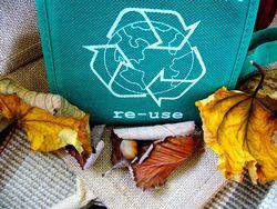 Felicidades, ¡es el Día Mundial del Reciclaje!