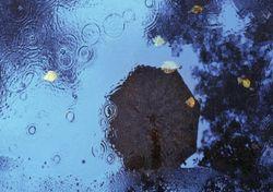 O outono, por fim? Chuva e trovoada regressam no fim de semana ao país