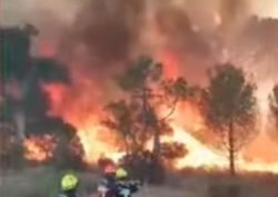 Francia, uno dei peggiori incendi colpisce la regione del Var: i video