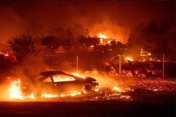 Grandes incêndios florestais estão devastando a Califórnia