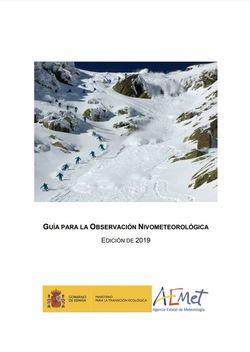 Guía para la observación nivo-meteorológica