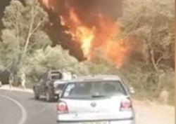 Incendi in Algeria, almeno 70 morti: i video