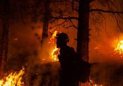 Incendios forestales en EE.UU. camino a un nuevo récord