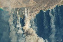 Incendios forestales y pandemia: impactos en el clima global 2020