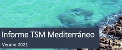 Informe temperatura superficial del mar del Mediterráneo: verano 2021