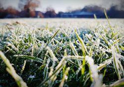Invierno congelado: ¿Por qué y cómo se forma la temida escarcha?