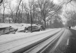 Kälteschock für Deutschland: Nächste Woche Schnee und Frost!