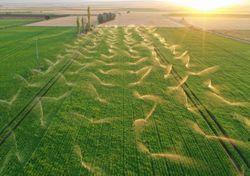 Bewässerungsmanagement: Schlüssel zur Abschwächung des Klimanwandels!