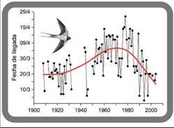 La fenología: ciencia para conectar biodiversidad y cambio climático