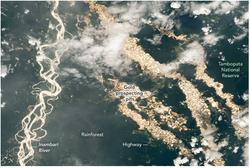 La fiebre del oro en la Amazonía peruana