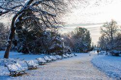 Météo en France : la neige fait son grand retour aujourd'hui !