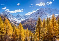 Meteo: ottobre con quattro stagioni. A quando l'inverno?