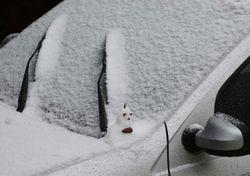 Frio intenso já chegou e pode nevar em localidades pouco comuns!