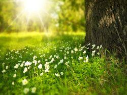 O tempo na segunda quinzena de abril