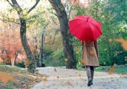 O tempo na segunda quinzena de outubro: o frio e a chuva, por fim?