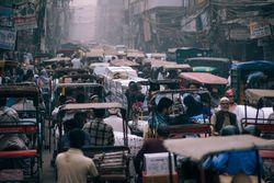 Olas de calor: cada año son más las personas afectadas