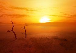 Onda de calor: o que é e porque acontece?