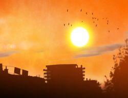 Climat : vers des vagues de chaleur de plus en plus dramatiques !