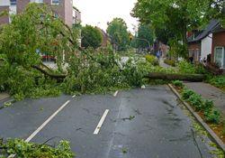 Orkan trifft am Sonntag auf Deutschland!