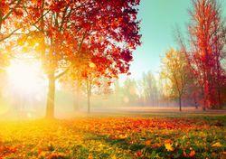 Outono 'estival' esta semana, com temperaturas de até 30 ºC!