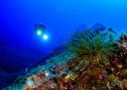 ¿Por qué gran parte de los océanos permanecen sin explorar?