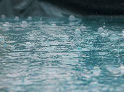 Por que sentimos o cheiro da chuva?
